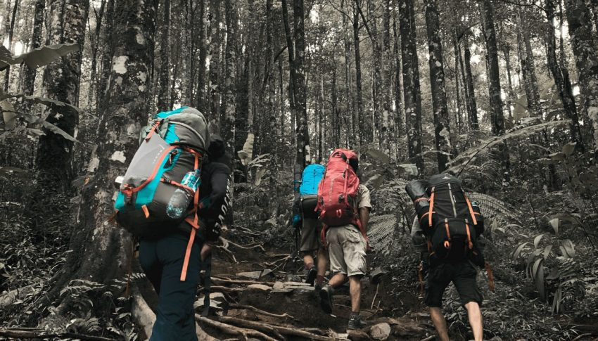 Pendakian Pertama (Bagian 2)